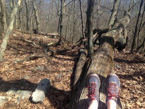 Jean poses her shoes against a long horizontal tree trunk on the ground